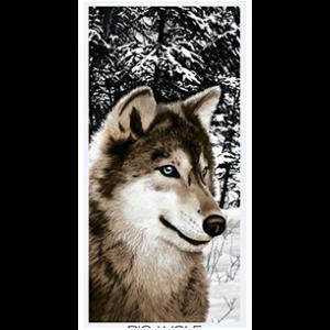 big_wolf