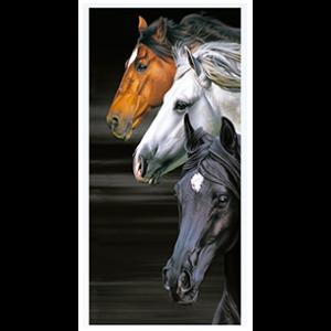 trilogy_horses